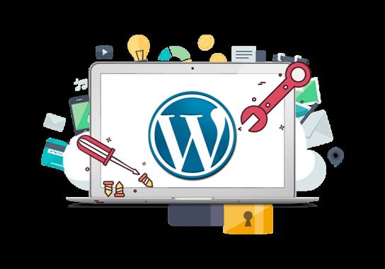 Plan de Mantenimiento WordPress Basic