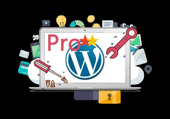 Plan de Mantenimiento Wordpress E-commerce