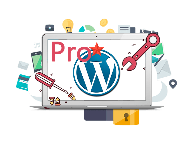 Plan de Mantenimiento Wordpress Pro