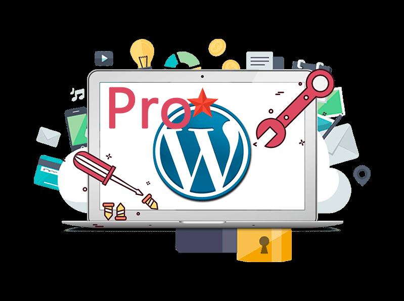 Plan de Mantenimiento Wordpress Pro